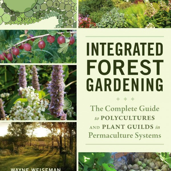 int-forest-gardening